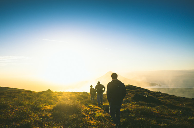 testimonianze allievi counseling